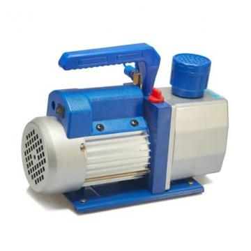 Vickers PVB29-RS-20-CC-11, Piston Pump