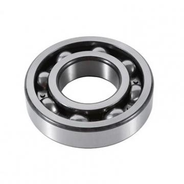 NSK R6ZZC3  Single Row Ball Bearings