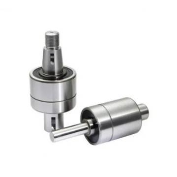 SKF 6007-2RS1/C3WT  Single Row Ball Bearings